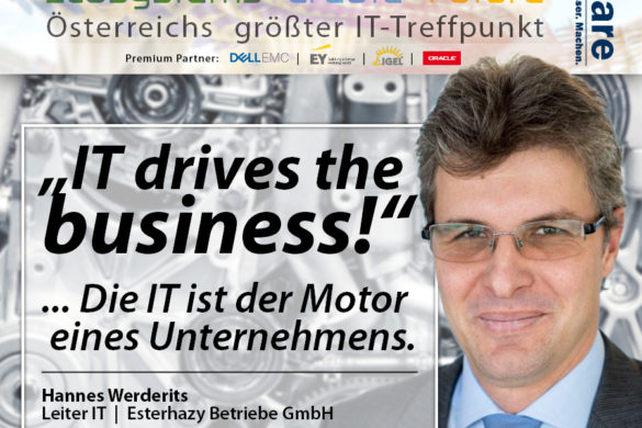 Hannes Werderits, Esterhazy Betriebe