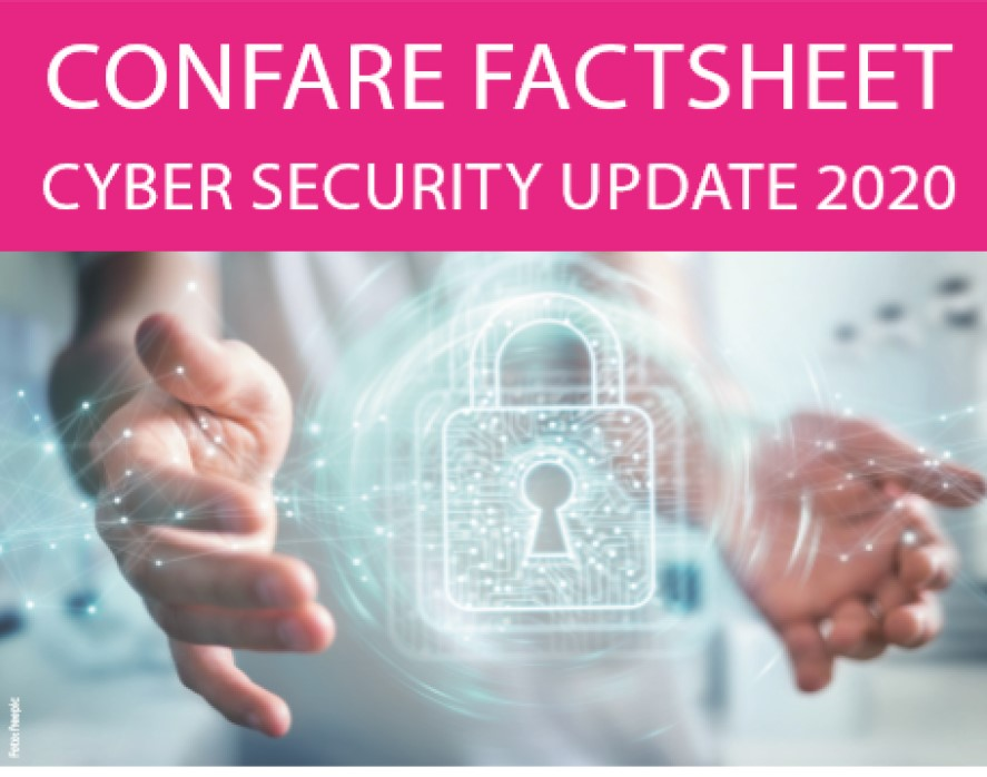 Cyber Security Factsheet 2020