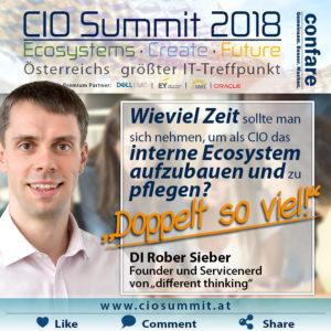 CIO Summit 2018 Meme Sieber - Ecosystempflege braucht mehr Zeit