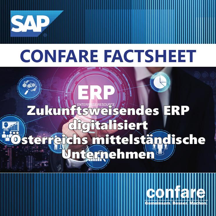 ERP Factsheet Beitragsbild